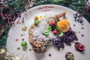 Ganymed-Weihnachtsfood